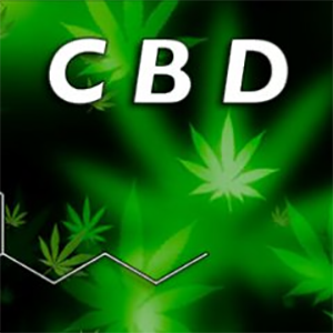 Buy CBD Crystals cheap