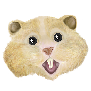 HamsterCoin live price