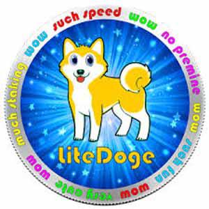 LiteDoge Converter